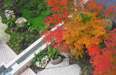 Création et entretien jardins et parcs