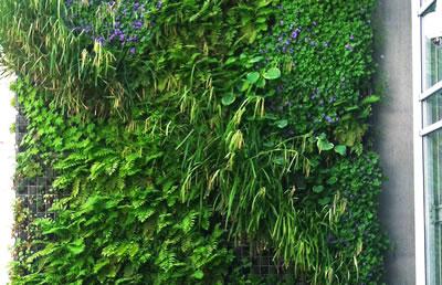 Contrat d 39 entretien jardins et espaces verts pour for Entretien des jardins et espaces verts