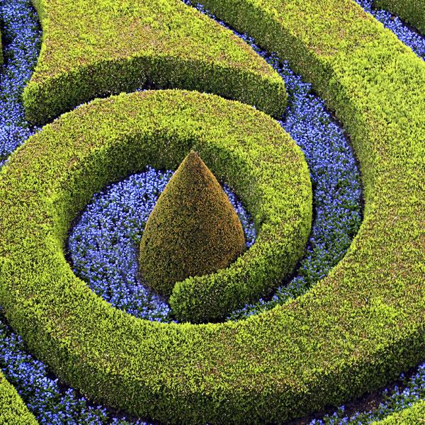 Green cr ation et entretien d espaces verts paris et idf for Global espaces verts