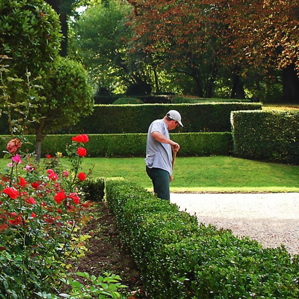 Green une offre globale de services en cr ation v g tale for Entretien jardin d une location
