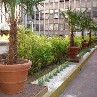 Aménagements et création pour cours et patios