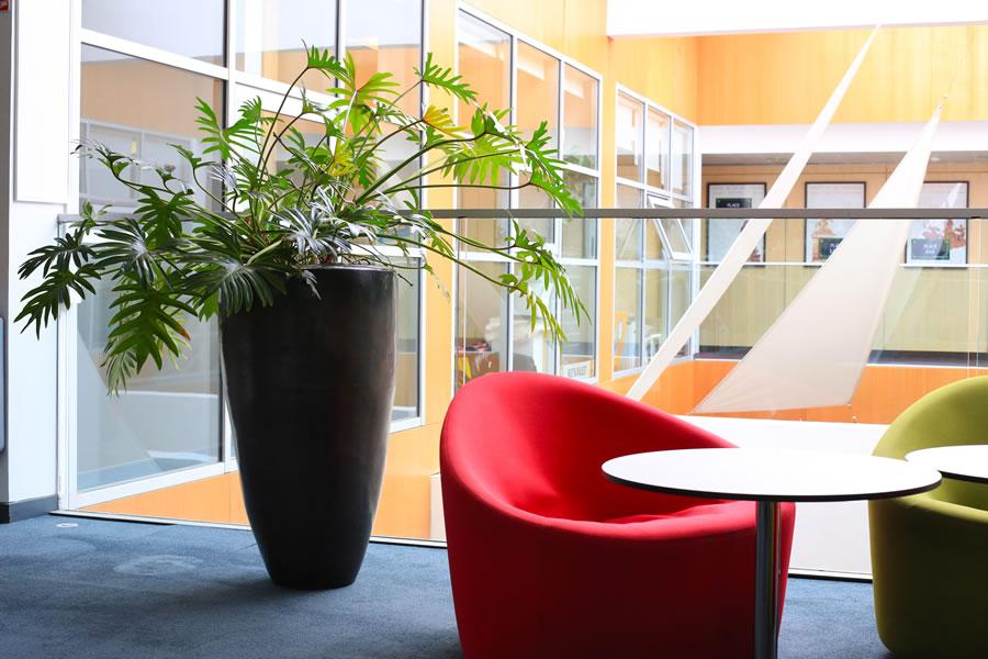 Design végétal d'intérieur