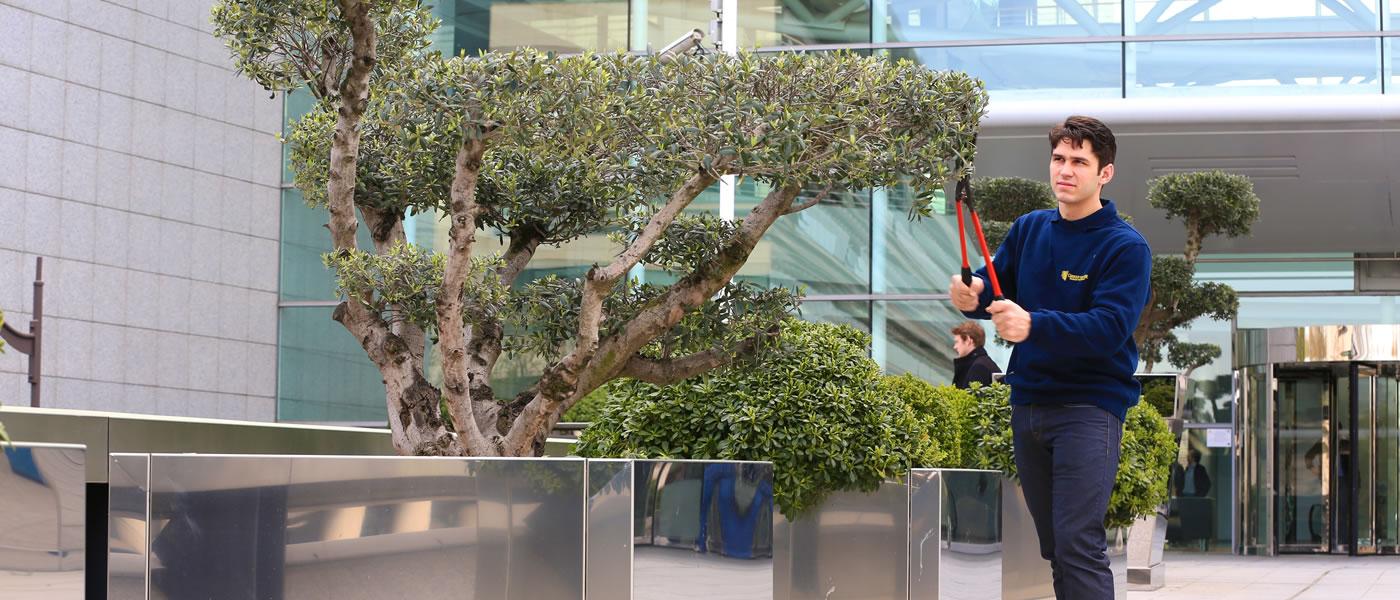 Contrat d 39 entretien jardins et espaces verts pour for Contrat entretien jardin