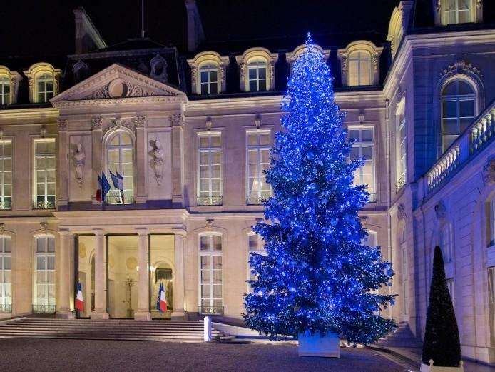 Sapin, décoration de Noël et ambiance lumineuse - Entreprises et institutions